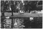 Am Luckower See (Freibad) - 1979